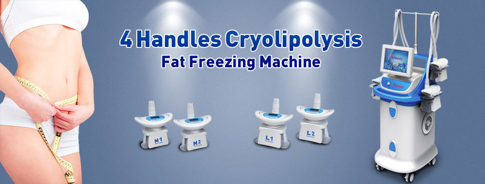 Chine le meilleur Cryolipolysis amincissant la machine en ventes